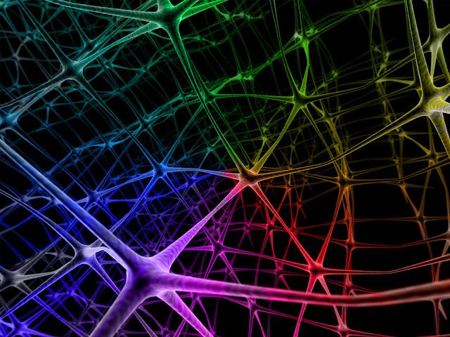 Пластичность мозга и как она влияет на творчество.
