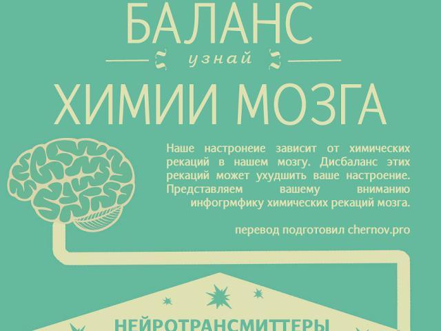 Инфографика:Баланс химии мозга